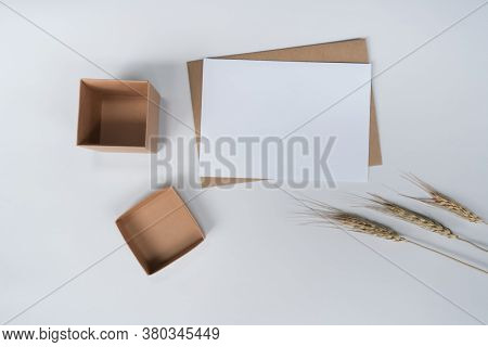 Blank White Paper On Brown Paper Envelope With Barle Dry Flower And Carton Box. Mock-up Of Horizonta