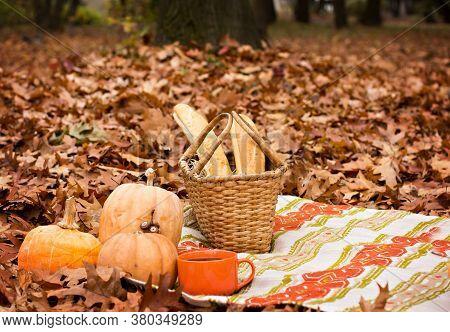 Autumn Picnic. Plaid, Pumpkins, Basket, Coffee, Baguettes, Book, Autumn Still Life, Cozy Picnic, Coz