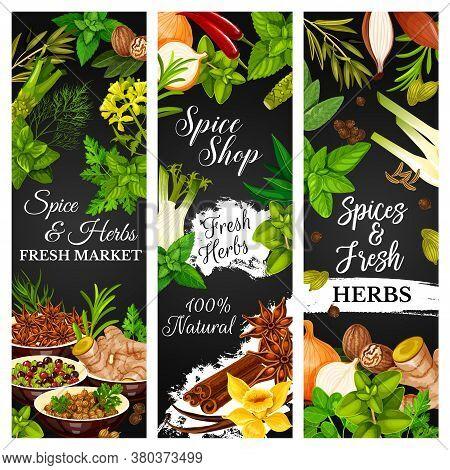Cooking Herbs And Seasonings, Condiments, Vector Food Vegetables. Farm Herbs And Seasonings Garlic A