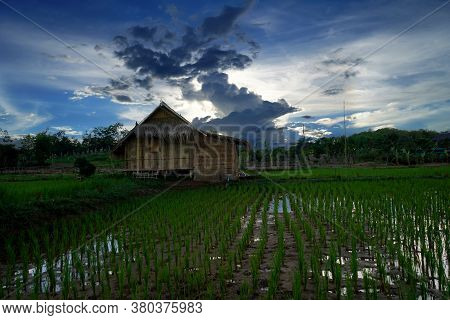 View Of Homestay Farmer Village In Thailand