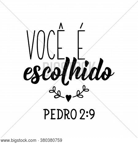 Brazilian Lettering. Translation From Portuguese - You Are Chosen. Modern Vector Brush Calligraphy.