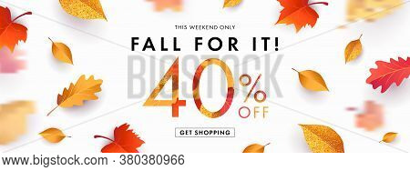 Autumn Sale Background, Banner, Poster Or Flyer Design. Vector Illustration With Bright Beautiful Le