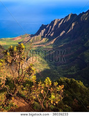 Beautiful Kalalau Valley