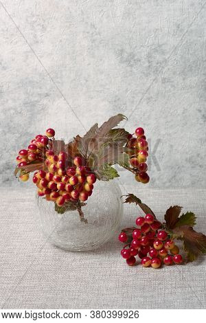 Viburnum In Glass Vase On Gray Background Still Life