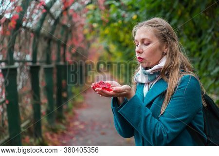Autumn And A Walk In The Fresh Air. A Young Blonde Woman Holds Red Leaves In Her Hands And Blows The