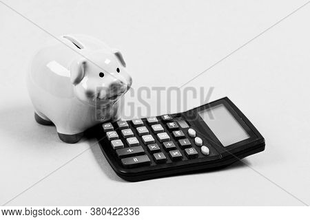 Piggy Bank Symbol Of Money Savings. Services For Accounting. Accounting Business. Accounting Softwar