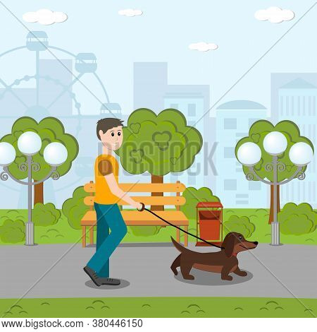 A Man Walks In The Park With A Dachshund Dog On A Leash, Flat Style, Clipart, Design, Decoration, Ba