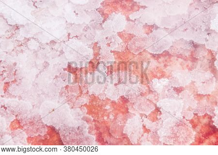 Pink Salt Crystals On The Salt Lake With Clear Water Close Up. Macro Image, Shallow Depth Of Field.