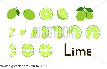 Citrus Fruit. Lime Whole And Cut, Half And Slices. Vitamin C. Set Of Positive Modern Vector Elements