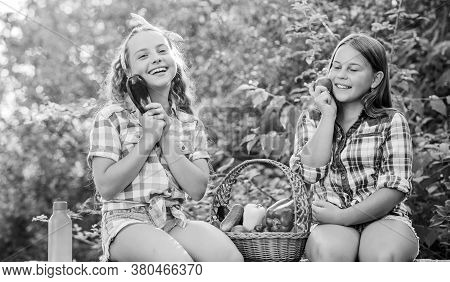Organic Harvest. Farm Market. Selling Homegrown Food Concept. Girls Cute Children Farming. Kids Gath