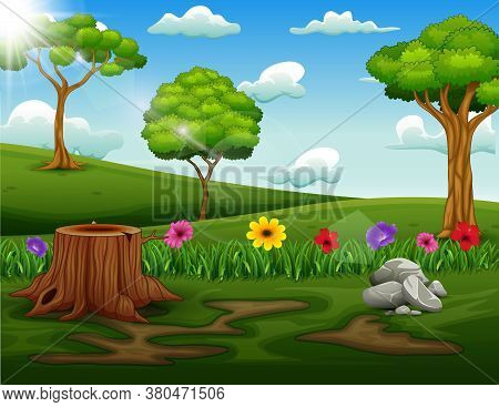 Background Scene With Tree Stump In The Park