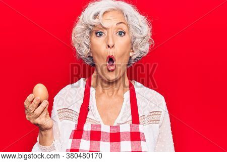 Senior grey-haired woman wearing apron holding egg scared and amazed with open mouth for surprise, disbelief face