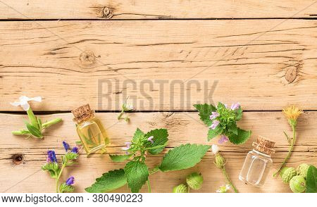 Various Plants, Leaves Of Healing Herbs And Healthy Oils On Wooden Background Top View Alternative M