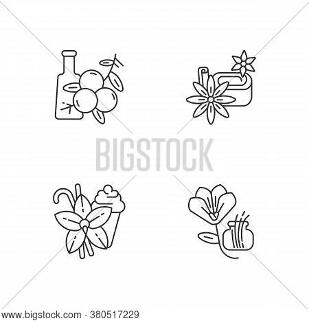 Linear Icons Set. Aromatic Flavoring. Food Seasoning. Cooking Condiment. Star Anise And Vanilla Stic