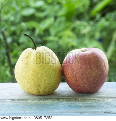 Apple And Barrow Fruit On Table In Garden Background