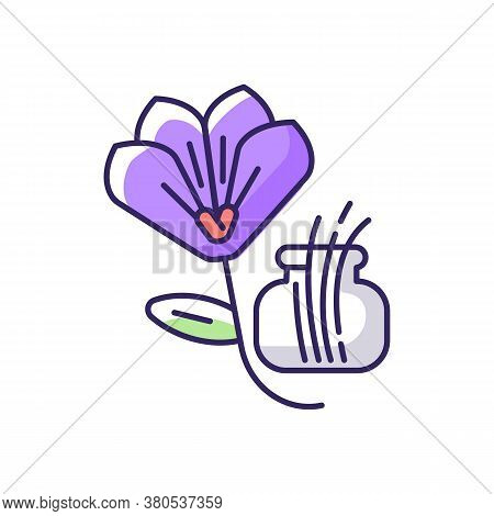 Saffron Rgb Color Icon. Saffron Crocus. Expensive . Supplement. Food Seasoning And Coloring. Herbs.