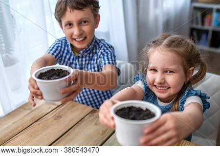 Cute Boy And Girl Sitting At Table And Engaged In Sowing Seeds For Cultivation. Children Sow Seeds I