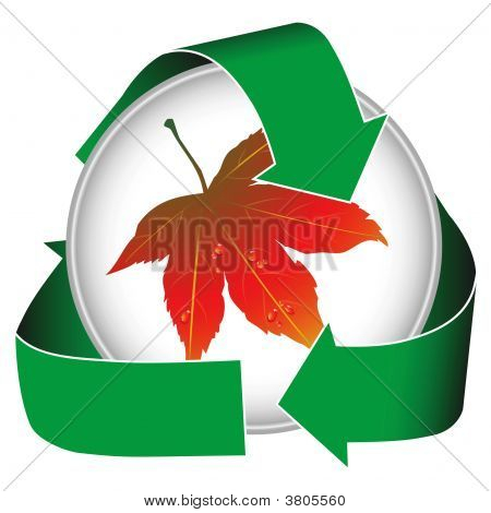 Earth Conservation W Maple Leaf