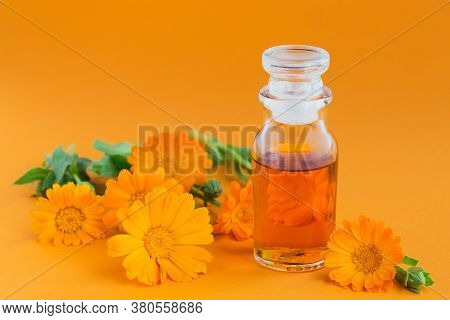 A Bottle Of Pot Marigold Tincture, With Fresh Calendula Flowers On Orange Background. Natural Herbal