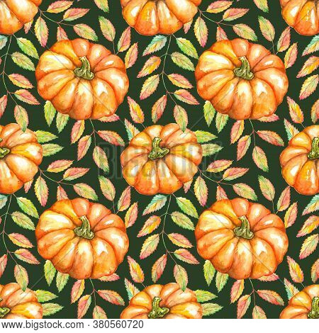 Watercolor Orange Pumpkin Vegetable Rowan Ash Berry Leaf Branch Plant Autumn Seamless Pattern Textur