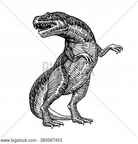 Prehistoric Reptile Of The Jurassic Period, Giant Carnivorous Dinosaur, Tyrannosaurus, Raptor, Vecto