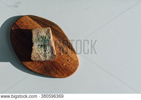 Mold On Bread, A Piece Of Rye Bread With White And Green Mold On A Wooden Cutting Board. Best Before