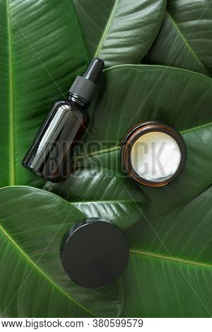 Facial Hyaluronic Serum Fluid Dropper And Moisturizer Cream In Brown Glass Bottle And Jar On Freshne