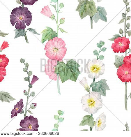 Beautiful Seamless Floral Pattern With Watercolor Summer Mallow Flowers. Stock Illustration.