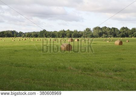 Field, Farm, Haymaking, Countryside During The Day In Summer.