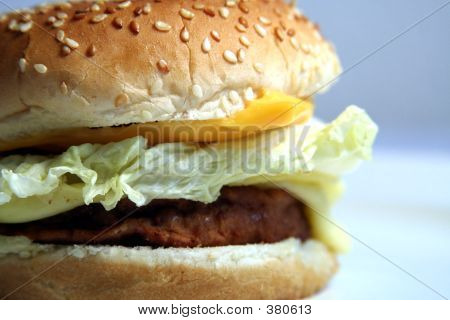 Burger Closeup