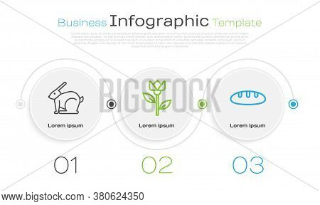 Set Line Easter Rabbit, Flower Tulip And Bread Loaf. Business Infographic Template. Vector
