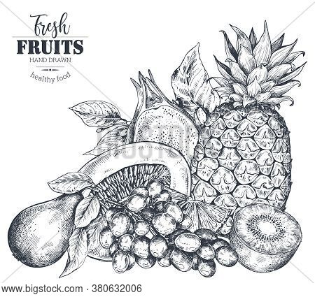 Vector Illustration Of Hand Drawn Vector Fresh Fruits In Sketch Style.