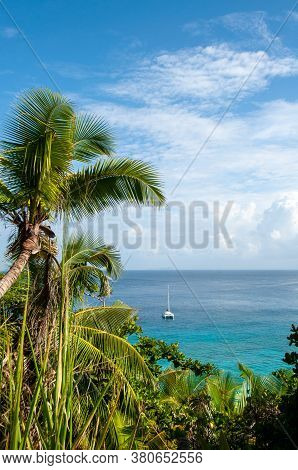 High Angle View Of A Catamaran Boat In An Idyllic Bay With Green Vegetation And Palm Tree In Anse Co