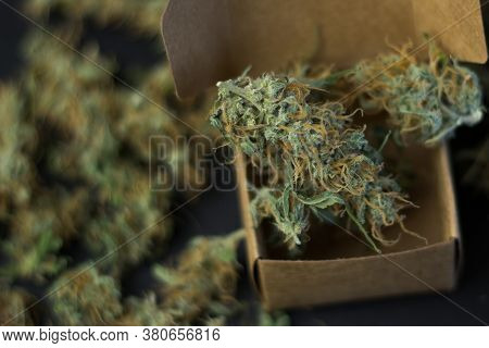 Marijuana In Box Close-up With Copy Space. Blurry Cannabis Background.