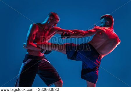 Adrenaline. Mma. Two Professional Fighters Punching Or Boxing Isolated On Blue Studio Background In