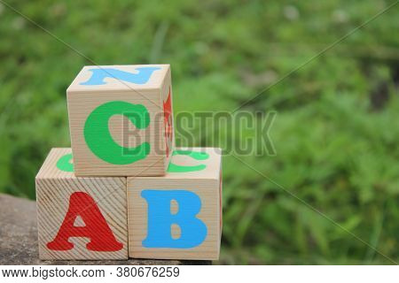 English Abc Letters On Wooden Toy Blocks Outdoors On A Green Grass Background. Learning Foreign Lang