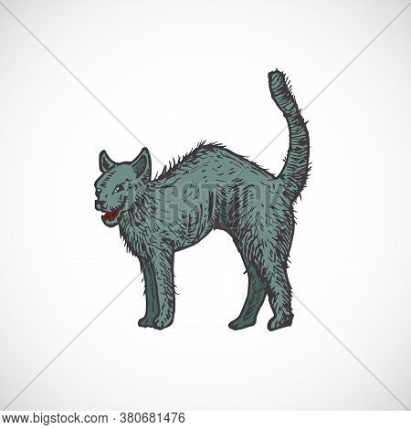 Hand Drawn Colorful Halloween Scary Evil Cat Vector Illustration. Abstract Animal Sketch. Holiday En