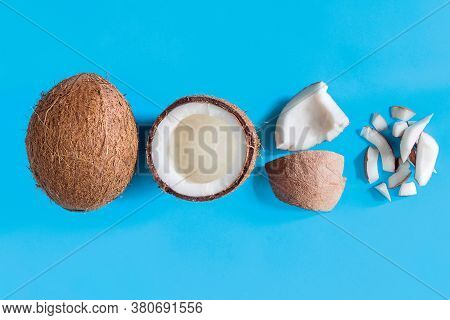 Brown Coconut, Half Of Nut, Pieces And Shavings Are In Center Of Blue Background Canvas. Tropical Ex