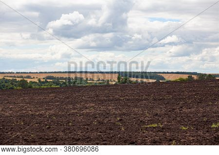 Summer Landscape With Arable, Ripe Wheat Field And Green Trees