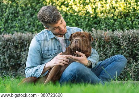 Caucasian Man Sitting On The Grass Embracing His Dog, A Shar Pei Labrador Mix. Portrait Photography