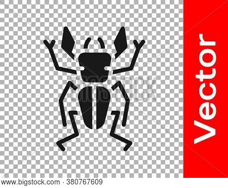 Black Beetle Deer Icon Isolated On Transparent Background. Horned Beetle. Big Insect. Vector