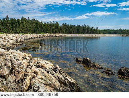 Trees Surround A Cove In The Schoodic Peninsula In The Acadia National Park In Maine