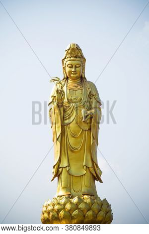 Golden Statue Of The Goddess Of Mercy  Guanyin Or Guan Yin Standing On The Lotus. Buddhist And Relig