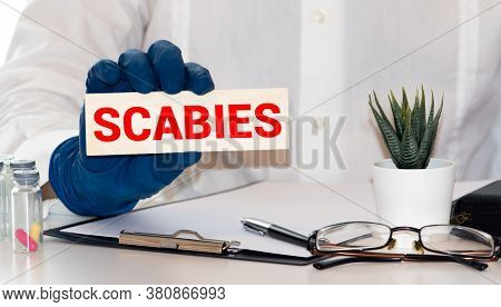Word Scabies Made With Wood Building Blocks