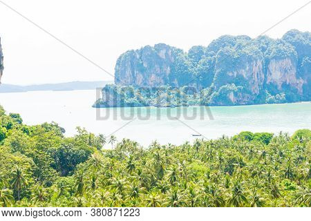 Phi Phi Island With Coconut Green Tree At The Bay Viewpoint