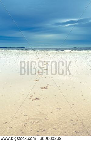 Northumberland Beach Landscape. Northumberland Beach Landscape. Northumberland Beach Landscape