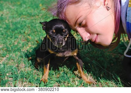 Teenager Girl And Her Toy Terrier Dog Cuddling. Outdoors Portrait Of A Small Dog And Teenager Girl.