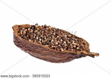 Chocolate Quinoa Seeds - Chenopodium Quinoa. Text Space