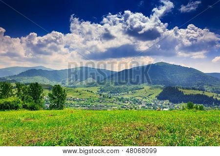 Meadow With Trees And Shrubs In Mountains Massif Away In The Background  On A Summer Day