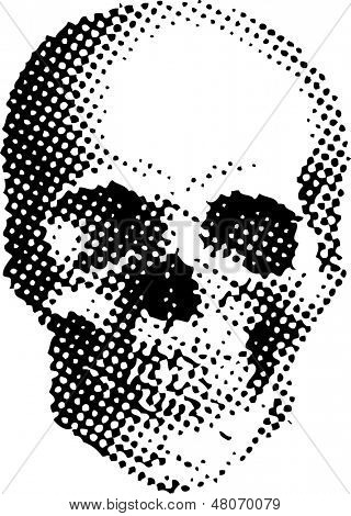 vector simple illustration with dotted skull, best for silkprint on t-shirt